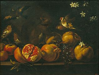 Still Life with Pomegranates, Grapes, Birds and a Squirrel