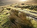 Track in Gleann a' Chlachain - geograph.org.uk - 262683.jpg