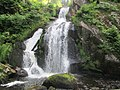 Triberg Waterfalls.JPG