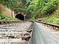 Tunnel No. 14 on my way towards Sonalium - Flickr - Dr. Santulan Mahanta.jpg