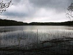 Turaveyskaye Lake.JPG