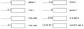 UML Multiplexität Beispiele.png