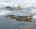 US Navy 030531-N-0000X-001 An F-14D Tomcat assigned to the.jpg