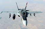 US Navy F-18E Super Hornets supporting operations against ISIL 141004-F-FT438-153.jpg