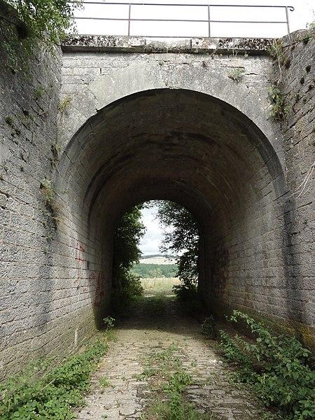 Ugny-sur-Meuse (Meuse) ancien chemin de fer (11) viaduc 1 arc