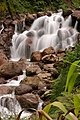 Utikini Waterfall, Tembagapura, Papua.jpg