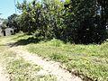 Vía La Torre - panoramio (15).jpg