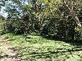 Vía La Torre - panoramio (6).jpg