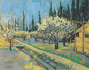 Flowering orchard, surrounded by cypress