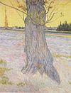 Van Gogh - Stamm einer alten Eibe.jpeg