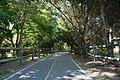 Ventura River Trail (aka Ojai Valley Trail) at Foster Park.jpg