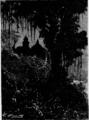 Verne - La Maison à vapeur, Hetzel, 1906, Ill. page 99.png