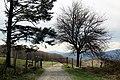 Via degli Dei, Firenzuola, fra il Pian di Balestra e il Passo della Futa 04.jpg