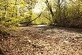 Vidange lac des Minimes avril 2010 - 009.JPG