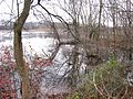 View East along Rancocas Creek from shoreline south of Bridge St., Rancocas, NJ November 26, 2009 - panoramio (1).jpg
