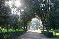 Villa Borghese (46491681291).jpg