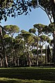Villa Borghese 17.jpg