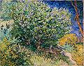 Vincent Willem van Gogh 044.jpg
