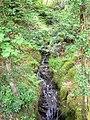 Vyrnwy stream - geograph.org.uk - 1326931.jpg