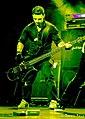 WTB Bass.jpg