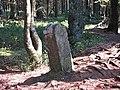 Waimes - Borne Luxembourg-Stavelot - Bois de Sourbrodt(1).jpg