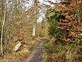 Waldweg - panoramio (21).jpg