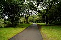 Walkway to Waimea Falls (5217032330).jpg