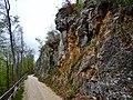 Wanderweg zum Neidlinger Waserfall - panoramio.jpg