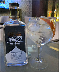 Warner Edwards Gin Tonica At Cappuccino Bar in Salou, Spain.jpg