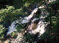Waterfall - panoramio (73).jpg