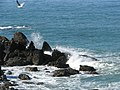 Waves breaking on rocks off St Ives Head - geograph.org.uk - 1208402.jpg