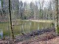 Weiher gespeist vom Hedersbach in der Nähe vom Glemseck - panoramio.jpg