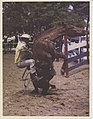 Werner Haberkorn - Evento esportivo - rodeio.jpg