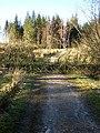 West Highland Way Obstruction - geograph.org.uk - 152557.jpg