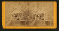 White Sulphur Springs, Napa Co. Cal, by J. G. Brayton 7.png