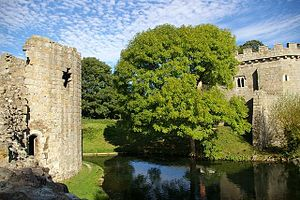 Whittington Castle 02.jpg
