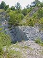 WikiProjekt Landstreicher Steinbruch an der Schanz 01.jpg