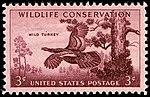 Wildlife turkey 1956 U.S. stamp.1.jpg