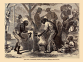 William L. Sheppard - First use of the Cotton Gin, Harper's weekly, 18 Dec. 1869, p. 813.png