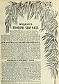 Wilson's seed catalogue - plant, tree and live stock annual, fresh and reliable garden field and flower seeds (1896) (20537640682).jpg