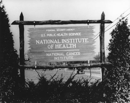 An early wooden sign for the National Cancer Institute Wooden sign.jpg