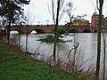 Worcester Bridge - geograph.org.uk - 355509.jpg