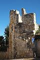 Zamora Torre 689.jpg