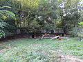 Zoo Mulhouse 175.JPG