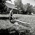 """""""Drvu"""", poznejši polleseni plug - pri ta Zadnjih, Podkraj 1960.jpg"""