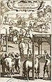 Élevage et éducation des chevaux (27822240976).jpg