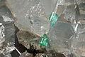 Émeraude, dolomite, pyrite, chalcopyrite 1100.FS2015 2.jpg