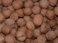 Багато горіхів.png