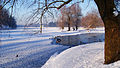 Белое озеро зимой.jpg