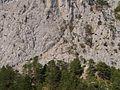 Гірський склон.jpg